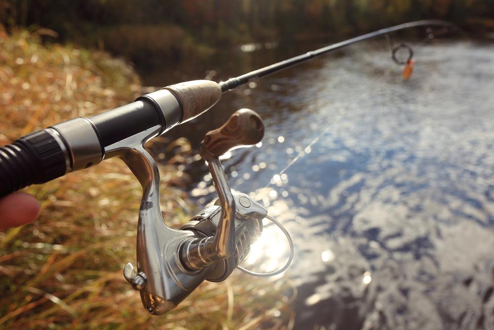 Riverbank Fishing